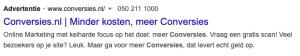 Google Ads advertentie zonder extensies